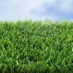 Grama Sintética – Precios y consejos para la hierba artificial
