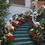 Como Decorar con Plantas de Navidad